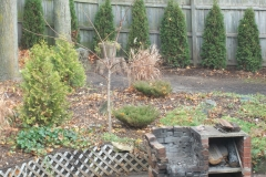 After Fence Line & Garden